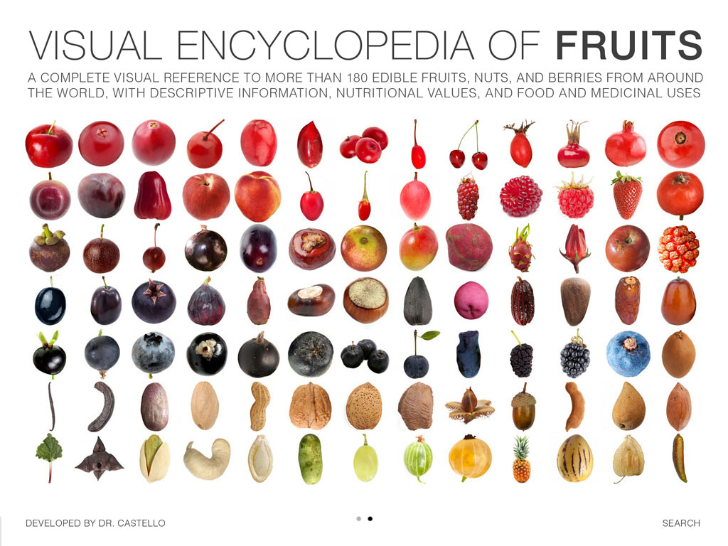 visual encyclopedia of fruits by dr castello